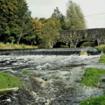Trout Tours NI Barry Reid